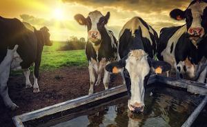 ProSol Agri Bulk Water™